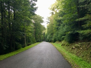 Nice roads made access to this park easy