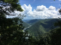 Incredible view of the New River Gorge