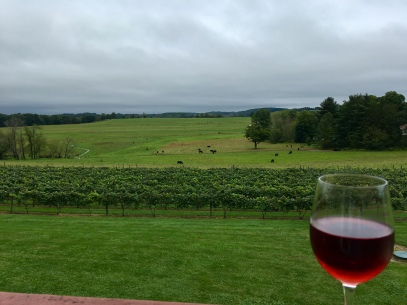 View from wine tasting room at Glades Pike Winery